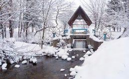 Paisagem Snow-covered no parque Imagem de Stock
