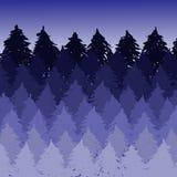 Paisagem spruce enevoada da floresta do vetor Silhuetas da escova de árvores coníferas Ilustração da violeta do vetor Ilustração Royalty Free