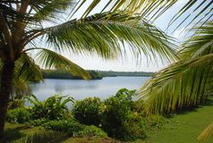 Paisagem Sri Lanka Foto de Stock Royalty Free