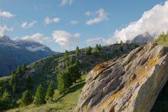 Paisagem suíça da montanha fotografia de stock royalty free
