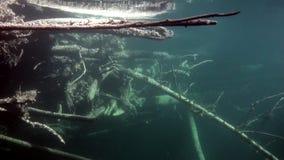 Paisagem subaquática na luz solar na água de Lena River em Sibéria de Rússia video estoque
