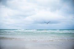 Paisagem sul da praia de Miami foto de stock