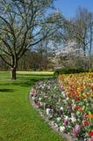 Paisagem surpreendente com as camas de flor e testes padrões de flor coloridos Fotografia de Stock Royalty Free