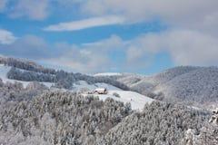Paisagem surpreendente do inverno Fotos de Stock
