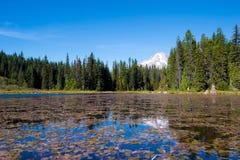 Paisagem surpreendente do lago com floresta e a montanha nevado Fotografia de Stock Royalty Free
