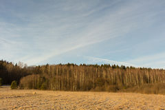 Paisagem surpreendente inverno bonito sobre o campo gelado claro Imagens de Stock Royalty Free