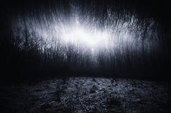 Paisagem surreal escura com prado e a floresta infinita Foto de Stock Royalty Free