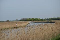 Paisagem típica da lagoa Imagens de Stock Royalty Free