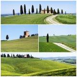 Paisagem típica de tuscan Foto de Stock