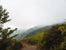 Paisagem temperamental: terreno montanhoso coberto nas nuvens e na névoa fotografia de stock royalty free