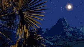 Paisagem tirada da noite das folhas de palmeira em um fundo das montanhas ilustração stock