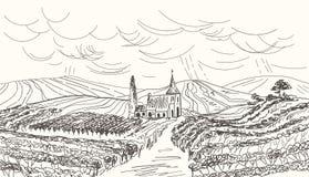 Paisagem tirada mão do vinhedo Ilustração do vetor do vintage ilustração stock