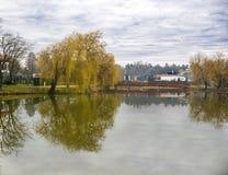 A paisagem tranquilo em um lago, com o céu nebuloso, e as árvores refletiram simetricamente na água imagem de stock royalty free