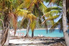 Paisagem tropical Imagens de Stock Royalty Free