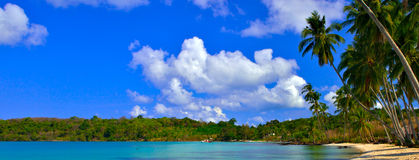 Paisagem tropical Fotografia de Stock