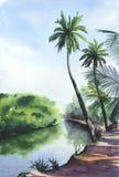 Paisagem tropical da aquarela ilustração do vetor