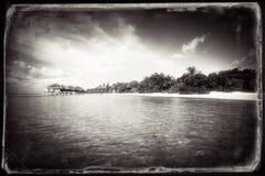 Estilizado retro da paisagem tropical da ilha Foto de Stock