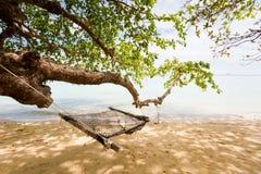 Paisagem tropical de Koh Kradan Imagens de Stock Royalty Free
