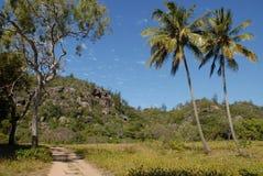 Paisagem tropical em Maggie Island, QLD, Austrália fotos de stock