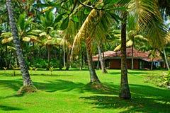Paisagem tropical ensolarada Fotos de Stock Royalty Free
