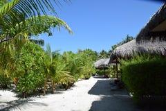 Paisagem tropical (Maldivas) Fotos de Stock Royalty Free