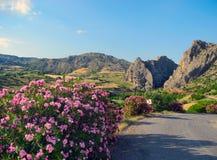 Paisagem turquia oriental da montanha Foto de Stock