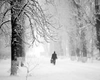 Paisagem urbana nevando com os povos que passam perto Fotos de Stock Royalty Free