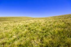 Paisagem vazia da montanha do verão com grama verde e o céu azul Imagens de Stock Royalty Free