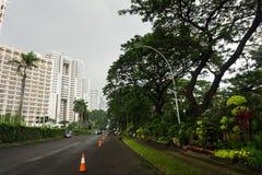 Paisagem verde bonita com as árvores grandes no meio da cidade e do céu claro como o fundo Jakarta recolhido foto Fotografia de Stock Royalty Free