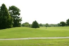 Paisagem verde da grama do golfe em Texas fotos de stock