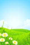 Paisagem verde da natureza Imagem de Stock Royalty Free