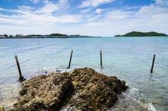Paisagem verde da natureza da ilha e do mar Foto de Stock Royalty Free