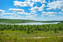 Paisagem verde da natureza em Rússia fotos de stock royalty free