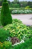 Paisagem verde fresca do jardim formal Imagens de Stock Royalty Free