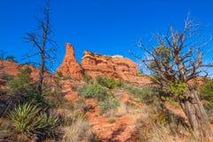 Paisagem vermelha do deserto da rocha fotografia de stock