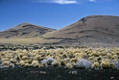 Paisagem vulcânica em Argentina, Argentina fotos de stock