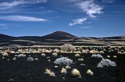 Paisagem vulcânica em Argentina, Argentina imagens de stock