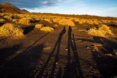 Paisagem vulcânica na ilha de Palma do La Fotografia de Stock Royalty Free