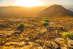 Paisagem vulcânica no console de Lanzarote Fotografia de Stock Royalty Free