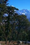 Paisagem-XVIII da passagem de Kuari do inverno Fotografia de Stock