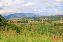 paisagens Imagem de Stock
