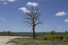 paisagens Foto de Stock Royalty Free