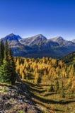Paisagens bonitas da montanha no outono Imagens de Stock Royalty Free