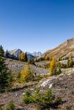 Paisagens bonitas da montanha no outono Fotografia de Stock Royalty Free
