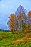 Paisagens bonitas da natureza de Bielorrússia Fotografia de Stock