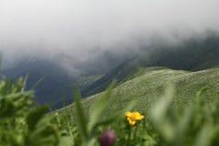 Paisagens da mola nas montanhas Imagem de Stock Royalty Free
