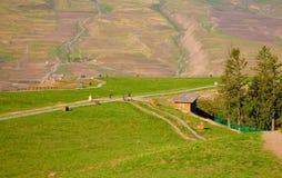 Paisagens da montanha de Qilian Fotografia de Stock