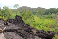 Paisagens da montanha de Seychelles Foto de Stock Royalty Free