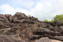 Paisagens da montanha de Seychelles Imagens de Stock