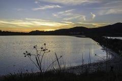 Paisagens da reserva natural de Diaccia Botrona Fotografia de Stock